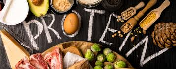 Protein – Why it's Important, How Much Should We Eat & Why You Should Avoid Excessive Protein Intake